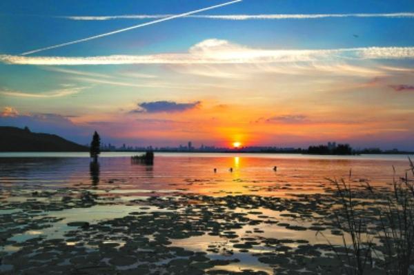 学习园地 武汉风情          日出日落是自然界壮阔的景观,印象中海边